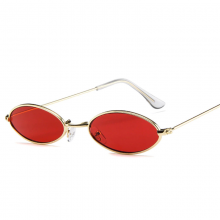 Vintage Oval Sunglasses with Metal Frame